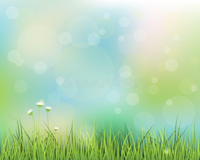 Зеленая трава с меньшей предпосылкой белого цветка иллюстрация штока