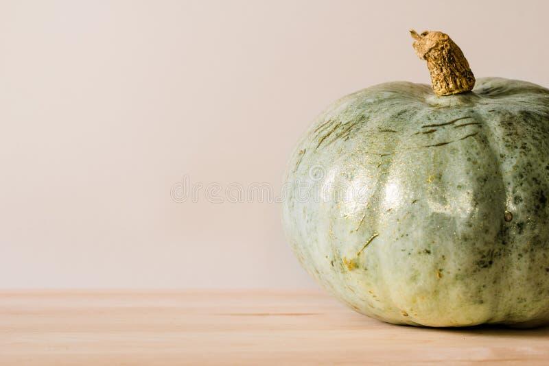 Зеленоват-голубая тыква стоковое фото