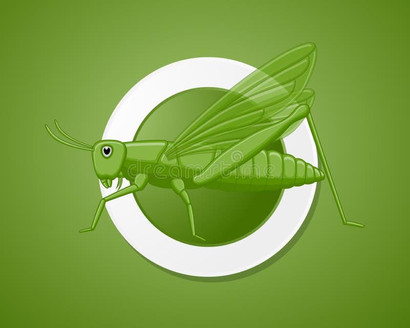 Зеленое насекомое кузнечика иллюстрация штока