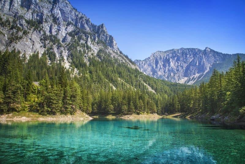Зеленое озеро стоковая фотография rf