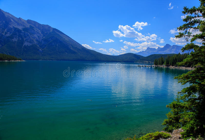 зеленое озеро стоковые изображения rf