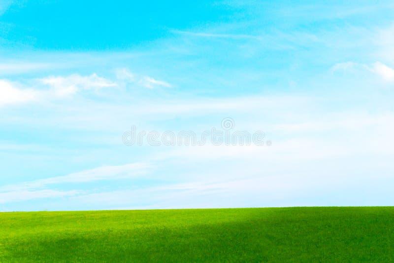 Зеленое поле против стоковые фотографии rf