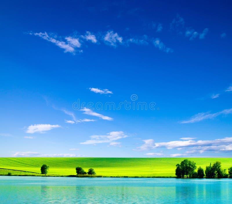 Download Зеленое поле стоковое изображение. изображение насчитывающей aiders - 33729285