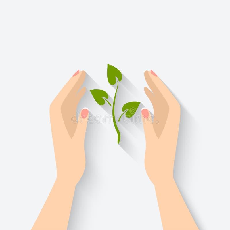 Зеленое растение в символе рук иллюстрация вектора