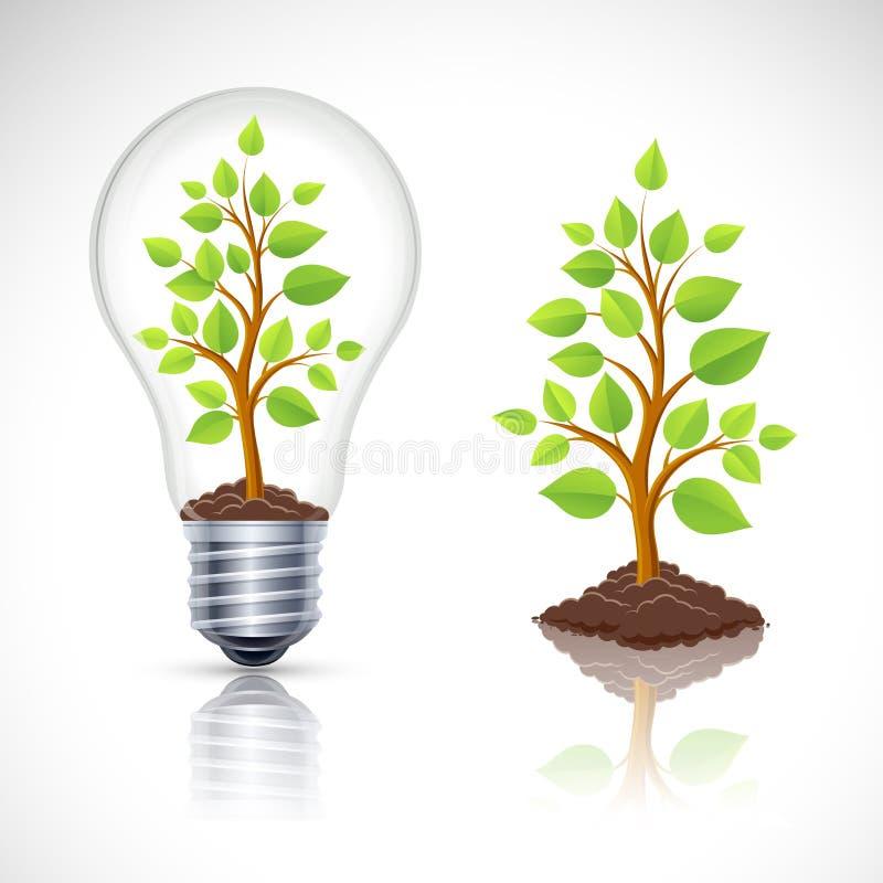 Зеленое растение в электрической лампочке с отражением иллюстрация вектора