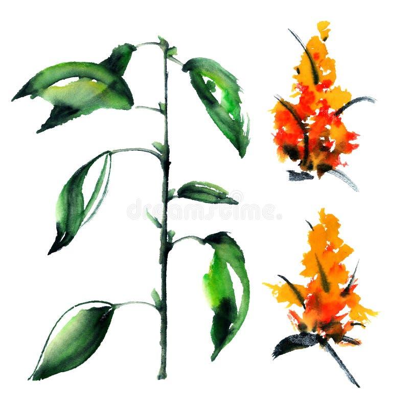 Зеленое растение с цветками иллюстрация вектора