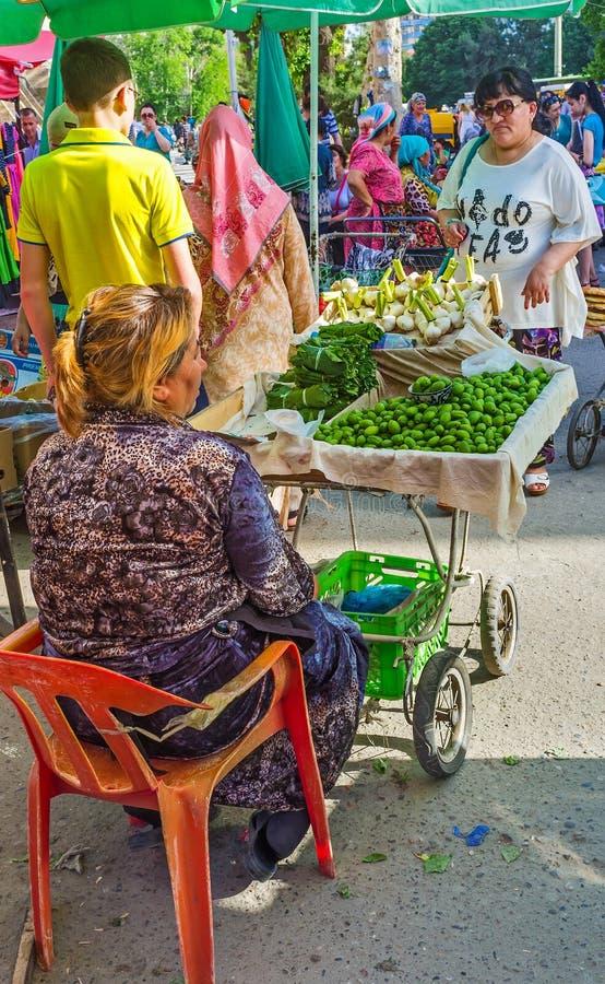 Зеленые абрикосы стоковое изображение