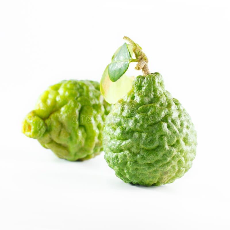 Зеленые грубые плодоовощ бергамота корки или известка kaffir изолированная на белизне стоковые фото
