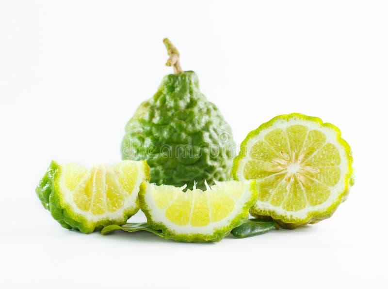 Зеленые грубые плодоовощ бергамота корки или известка kaffir изолированная на белизне стоковая фотография rf