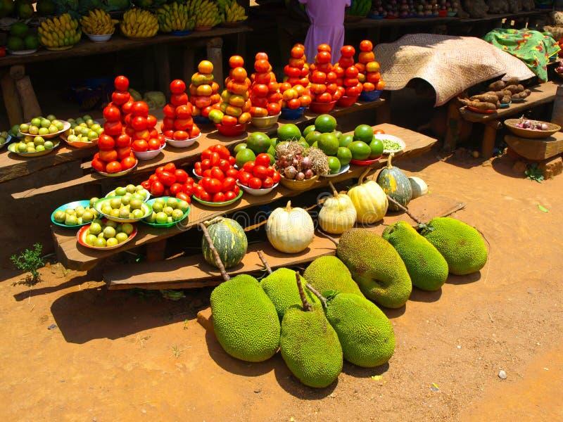 Зеленые джекфруты стоковое фото rf