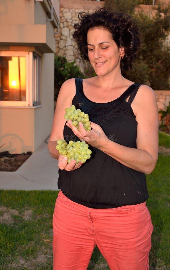 Зеленые израильские виноградины стоковые фотографии rf