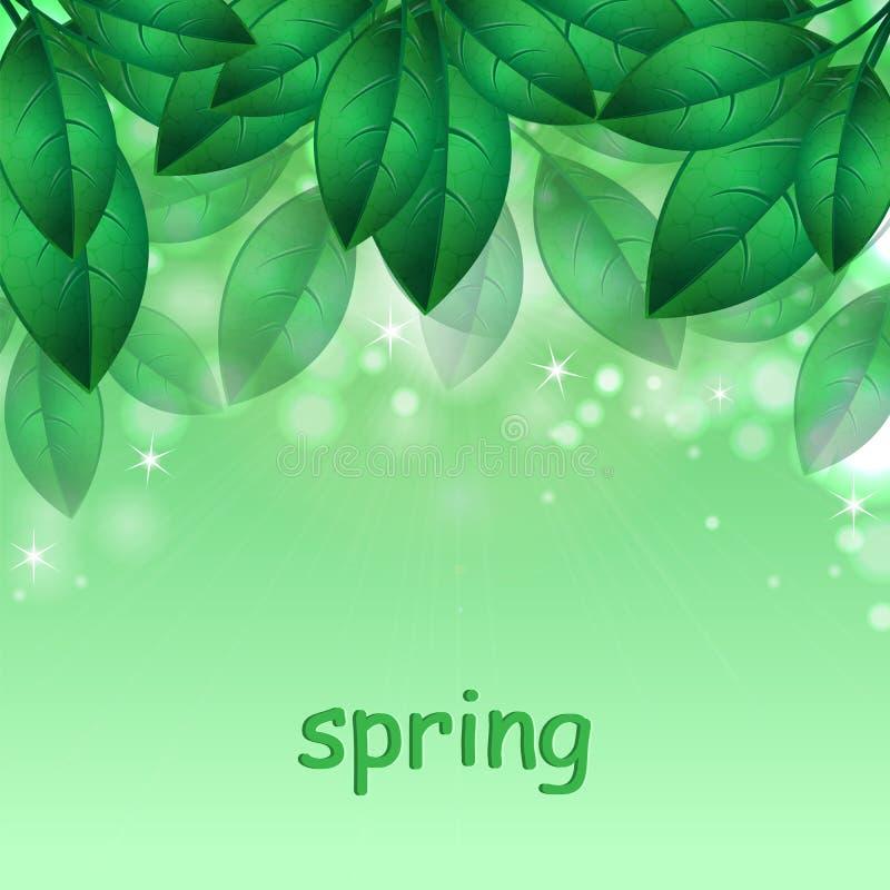 Зеленые листья весны иллюстрация вектора