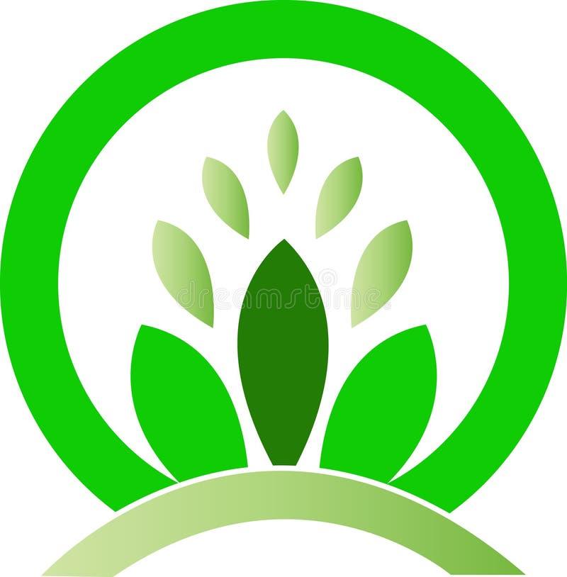 зеленые листья бесплатная иллюстрация