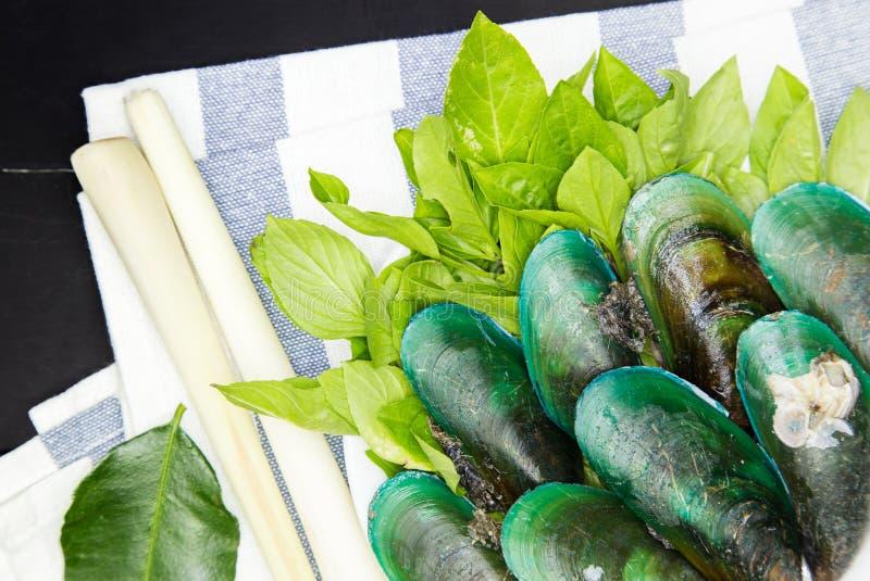 зеленые мидии стоковое фото rf