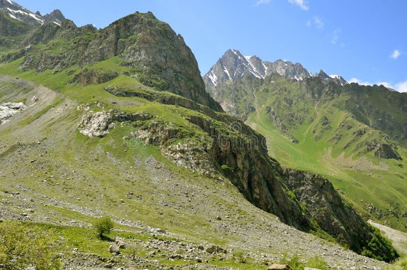 Зеленые наклоны гор стоковые фото