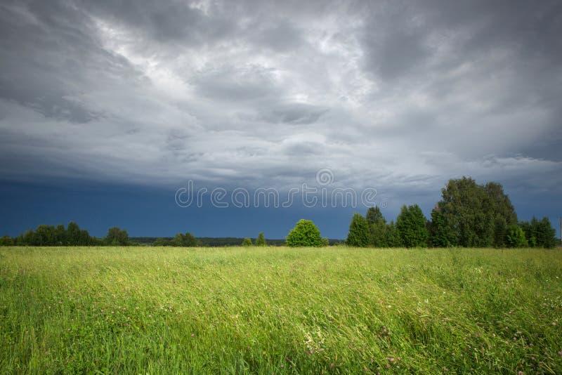 Зеленые поле и небо после шторма стоковая фотография rf