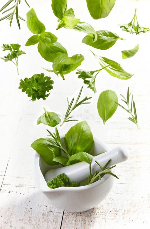 Зеленые травы падая в миномет и пестик стоковое фото