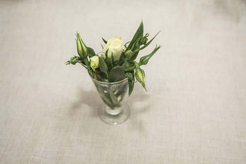 Зеленые цветки стоковая фотография rf