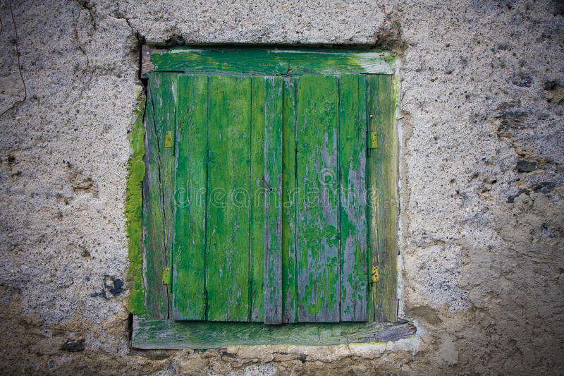 зеленые штарки стоковая фотография
