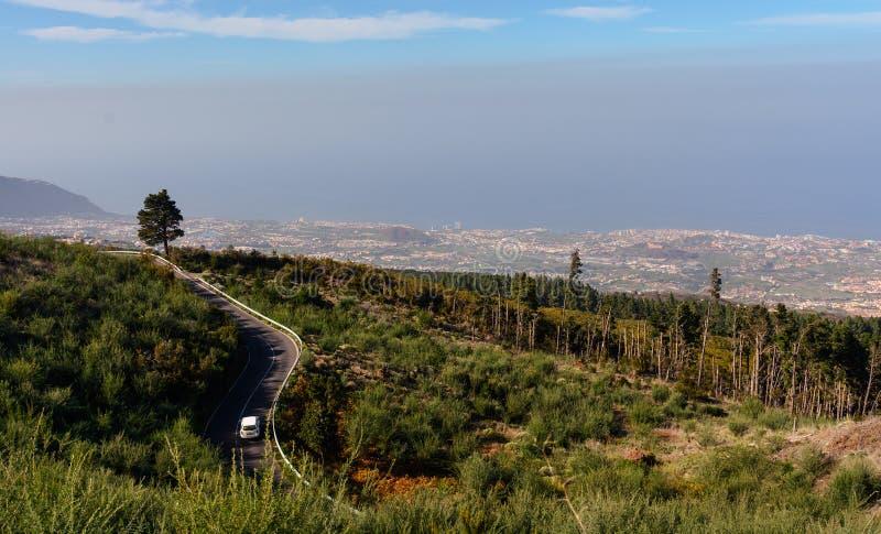 Зеленый ландшафт острова Тенерифе, Испании стоковые фотографии rf