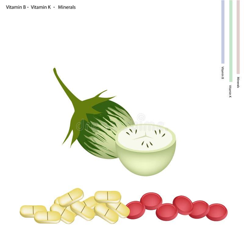 Зеленый баклажан с Витамином B, c и минералами иллюстрация вектора