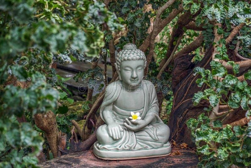 Зеленый, белый, спокойный, мир, статуя, цветок, культура, старый, духовная, буддизм, конспект, диаграмма, Дзэн, сад, висок, верои стоковое фото rf
