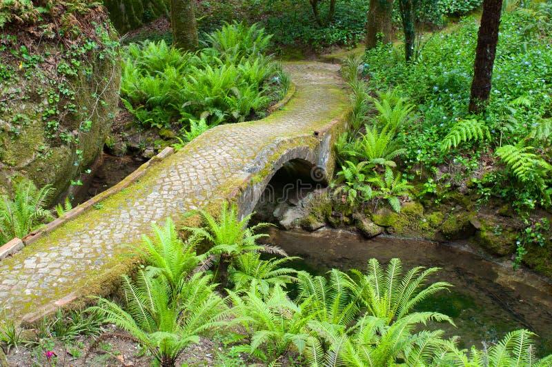 Download Зеленый лес в саде Palacio Da Pena, Sintra Стоковое Изображение - изображение насчитывающей туризм, португалия: 40586157