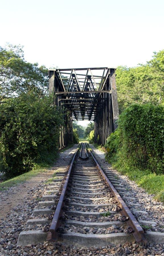 Зеленый железнодорожный мост стоковые изображения
