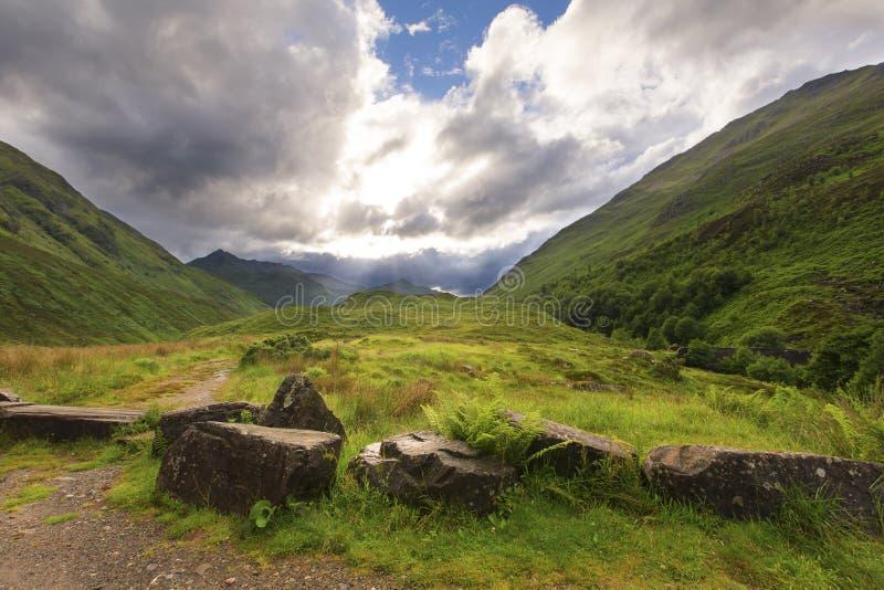 Зеленый и сочный распадок в гористых местностях Шотландии после дождя стоковые фото