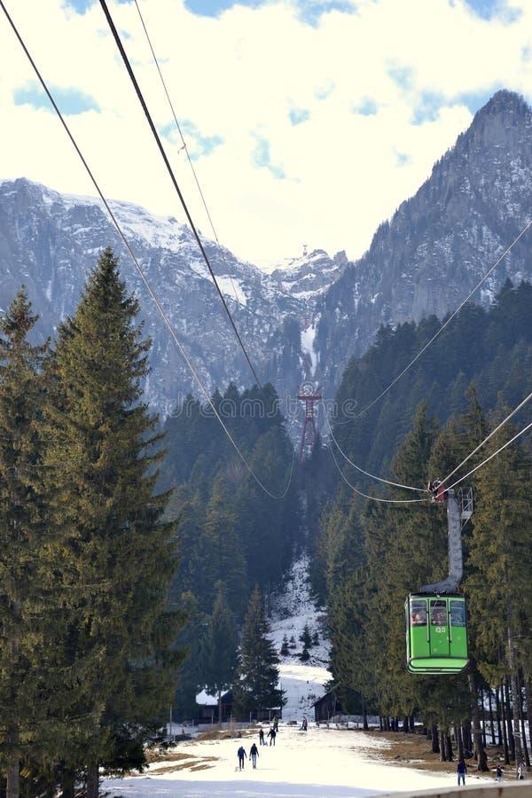 Зеленый кабель стоковое фото rf