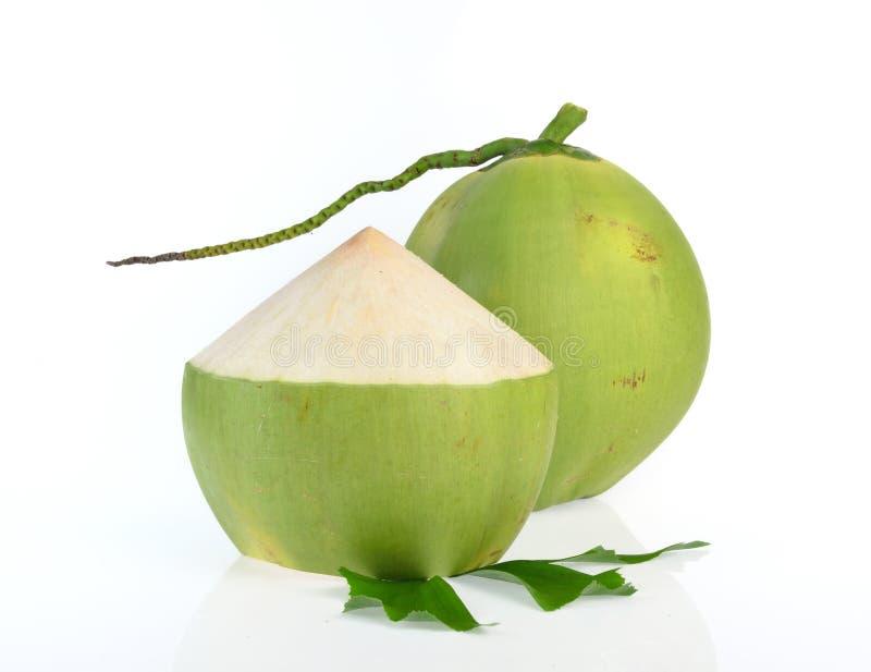 Зеленый кокос изолированный на белой предпосылке стоковое изображение