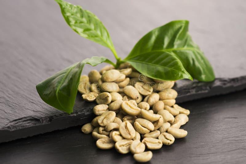 Зеленый кофе стоковые фото