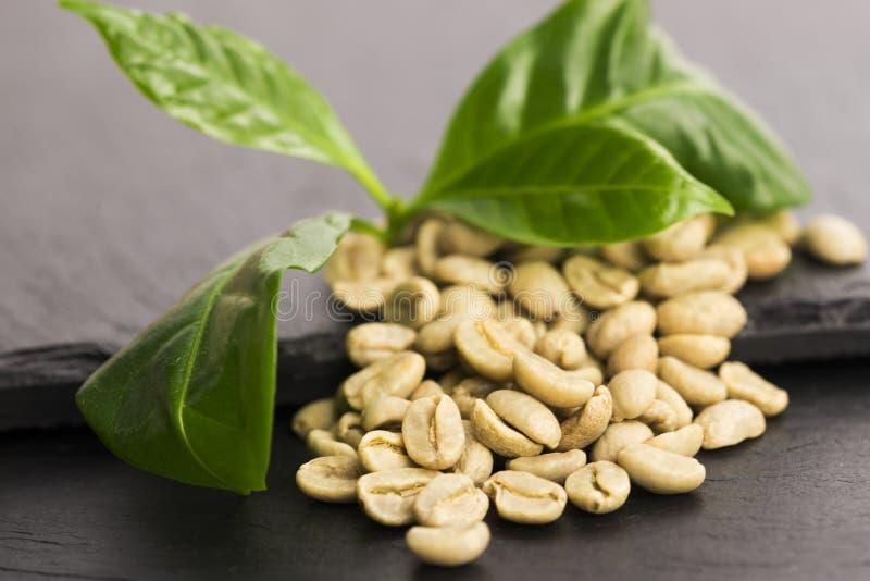 Зеленый кофе стоковые изображения