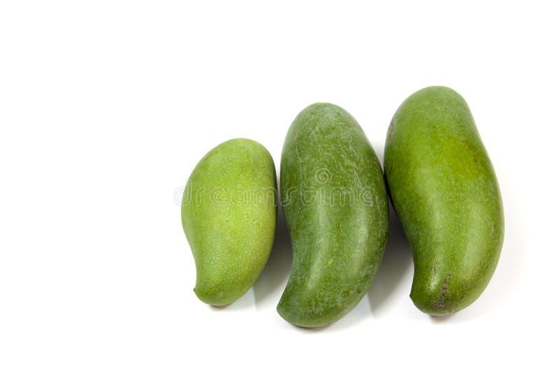 зеленый манго стоковое изображение