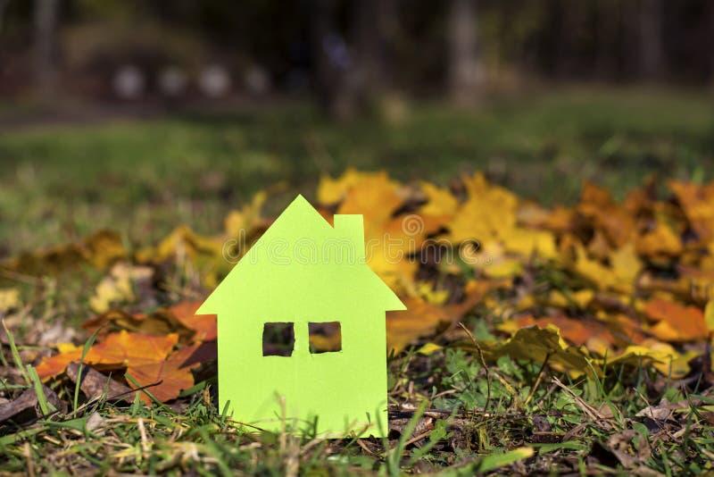 Зеленый дом в зеленом поле осени стоковое фото rf