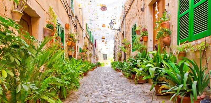 Зеленый переулок в Valldemossa, Мальорке стоковые фото