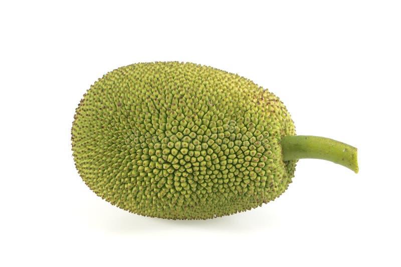 Зеленый плодоовощ jack на белой предпосылке стоковые изображения rf