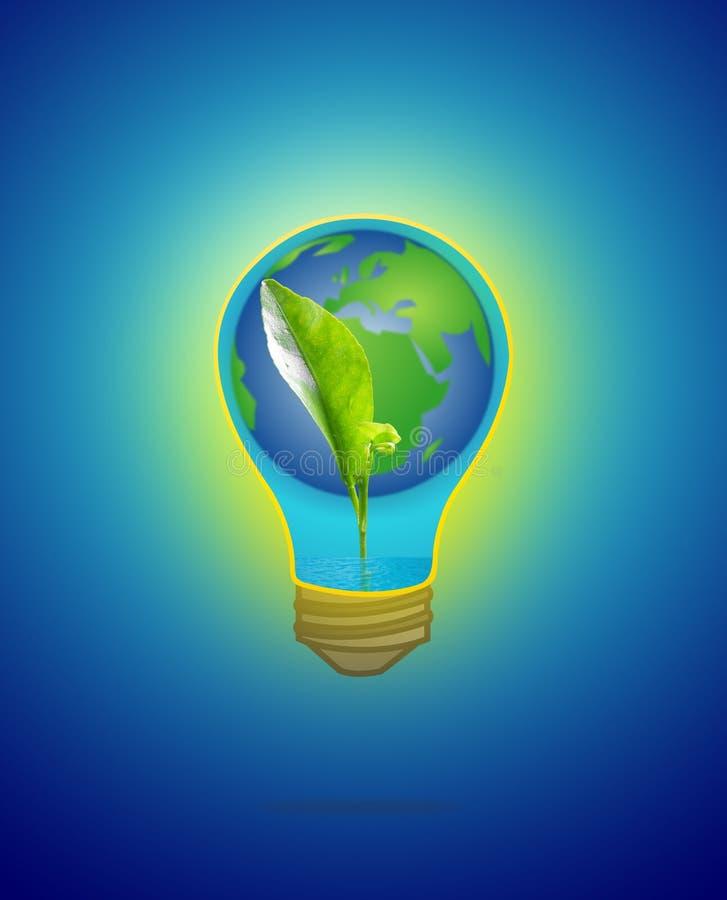Зеленый саженец с водой & землей в электрической лампочке на сини стоковые фотографии rf