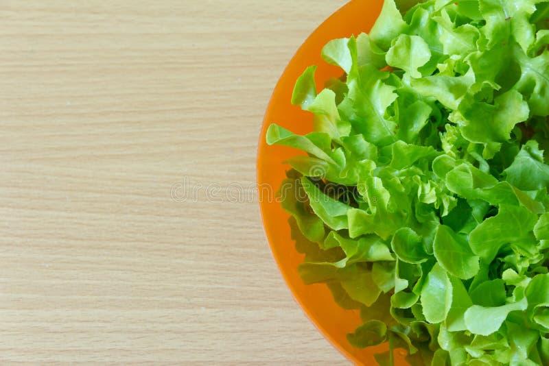 Зеленый салат дуба в оранжевом шаре стоковое изображение