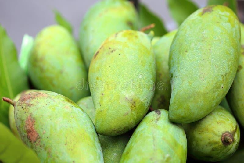 Зеленый свежий манго стоковое изображение rf