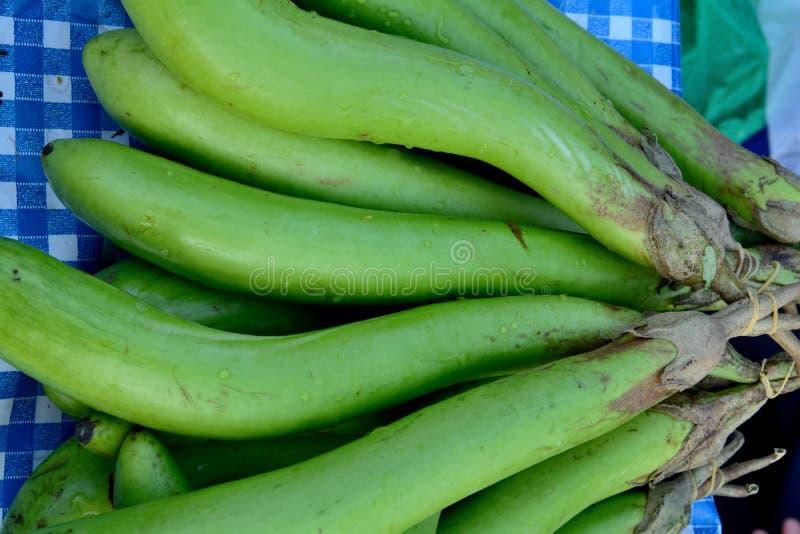 Зеленый цвет баклажана стоковое фото rf