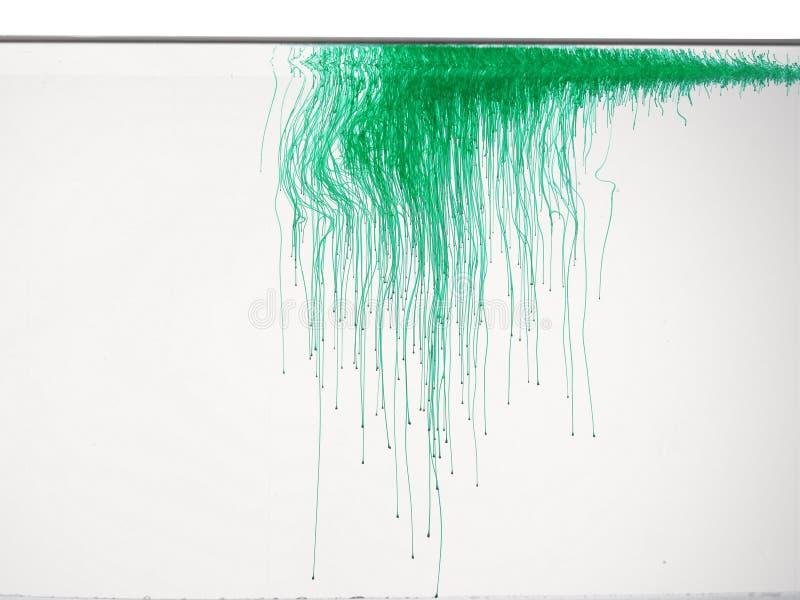 Зеленый цвет в воде стоковое фото