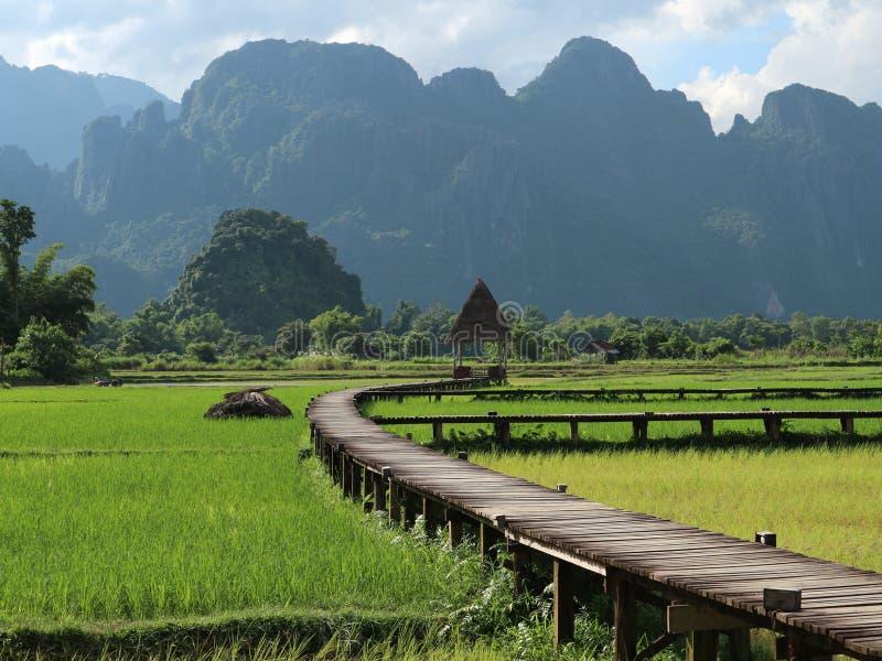 Зеленый цвет горы стоковая фотография