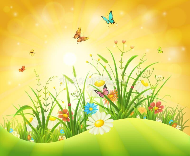 зеленый цвет предпосылки выходит лето природы клена влажным бесплатная иллюстрация