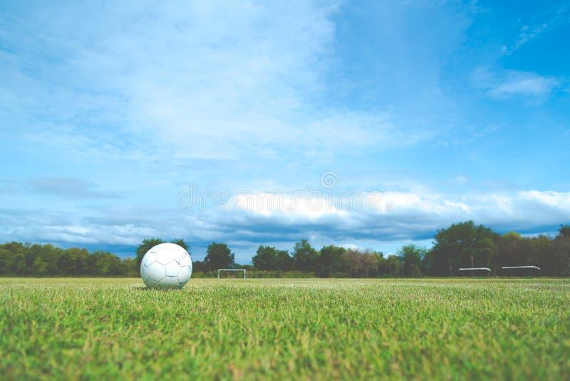 зеленый цвет травы футбола старый стоковые изображения