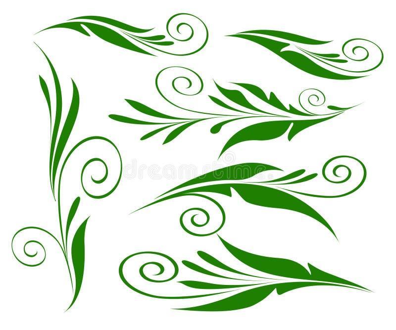Зеленый цвет элементов флористического дизайна на изолированной белизне бесплатная иллюстрация