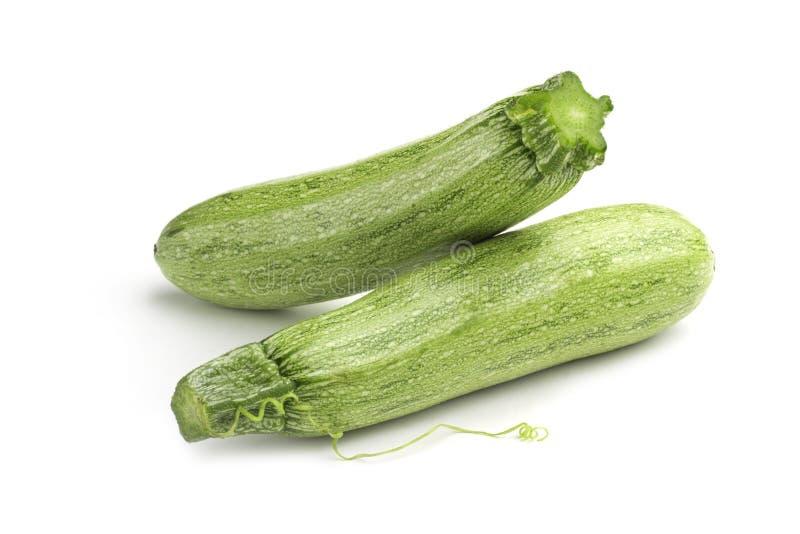 Зеленый цукини стоковая фотография rf