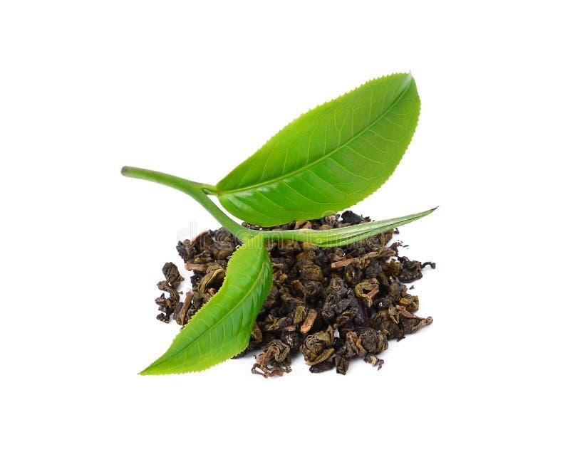 зеленый чай листьев стоковое изображение rf