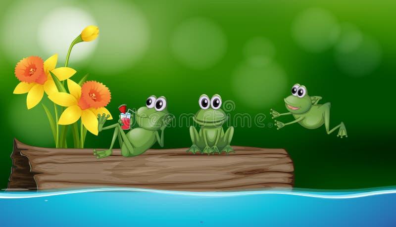 3 зеленых лягушки на журнале иллюстрация вектора