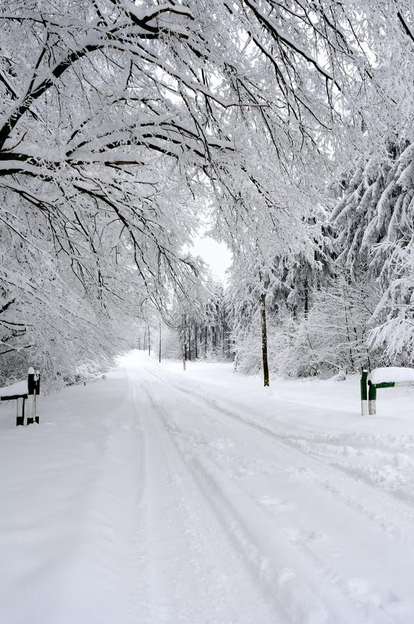 зима белизны валов сезона дороги стоковая фотография rf